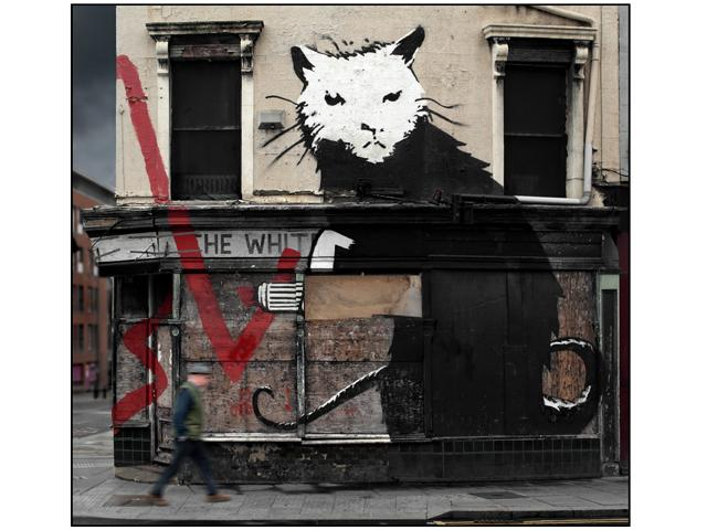 Banksy's rat House